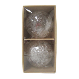 allen + roth 2-Pack Clear Blown Glass Ornaments with Texture