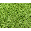 Smart Turf 12-ft Wide Bayside Cut-to-Length Artificial Grass