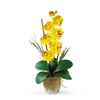 Nearly Natural 21-in Yellow Phalaenopsis
