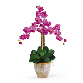 Nearly Natural 27-in Orchid Phalaenopsis