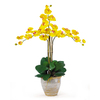 Nearly Natural 27-in Yellow Phalaenopsis Orchid