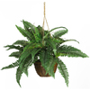 Nearly Natural 18-in Green Boston Fern