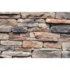 M-Rock Appalachian Ledge 100-sq ft Brown Stone Veneer