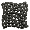 Solistone 10-Pack 11-in x 11-in Freeform Mosaic Black Glass Wall Tile