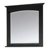 allen + roth Kingsland 26-in W x 30-in H Ebony Rectangular Bathroom Mirror