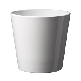 10-in H x 10-in W x 10-in D Shiny White Ceramic Planter