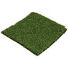 SYNLawn 6-in x 6-in Syngreen I Artificial Grass Sample