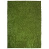 SYNLawn 7.5-ft x 5-ft Collection Bl06 Artificial Grass