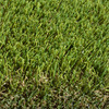 SYNLawn UltraWear III 15-ft Wide Cut-To-Length Artificial Grass