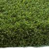 SYNLawn UltraWear I 6-in x 6-in Artificial Grass Sample