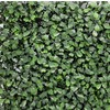 EasyIvy 20-in W x 20-in L Dark Green Boxwood