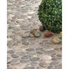 FLOORS 2000 5-Pack Agrega Gray Glazed Porcelain Indoor/Outdoor Floor Tile (Common: 18-in x 18-in; Actual: 17.75-in x 17.75-in)
