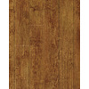 allen + roth Allen + Roth 5-in W x 50-3/4-in L Handscraped Ginger Maple Laminate Flooring