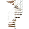 DOLLE Oslo 55-in x 10-ft White with Wood Treads Spiral Staircase Kit