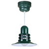 Brooster 12-in W Green Pendant Light