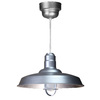 Brooster 18-in W Galvanized Pendant Light