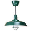 Brooster 20-in W Green Pendant Light