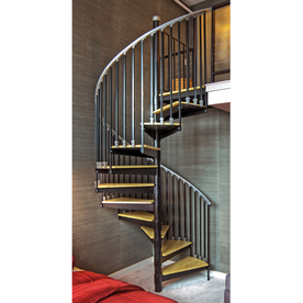The Iron Shop 4-ft Ontario Black Baked Enamel Spiral Staircase Kit