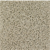 Engineered Floors Calaveras Sandstone Textured Indoor Carpet