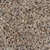Engineered Floors Cornerstone Desert Sand Textured Indoor Carpet