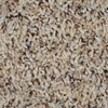 Engineered Floors Cornerstone Monarch Textured Indoor Carpet