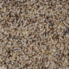Engineered Floors Cornerstone Wilderness Textured Indoor Carpet