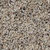 Engineered Floors Cornerstone Wheeler Textured Indoor Carpet