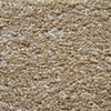 Engineered Floors Cornerstone Cheyenne Textured Indoor Carpet