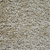 Engineered Floors Cornerstone Frontier Textured Indoor Carpet