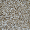 Engineered Floors Cornerstone Carson City Textured Indoor Carpet