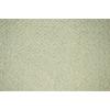 allen + roth Cream/Normal Rectangular Indoor Woven Area Rug