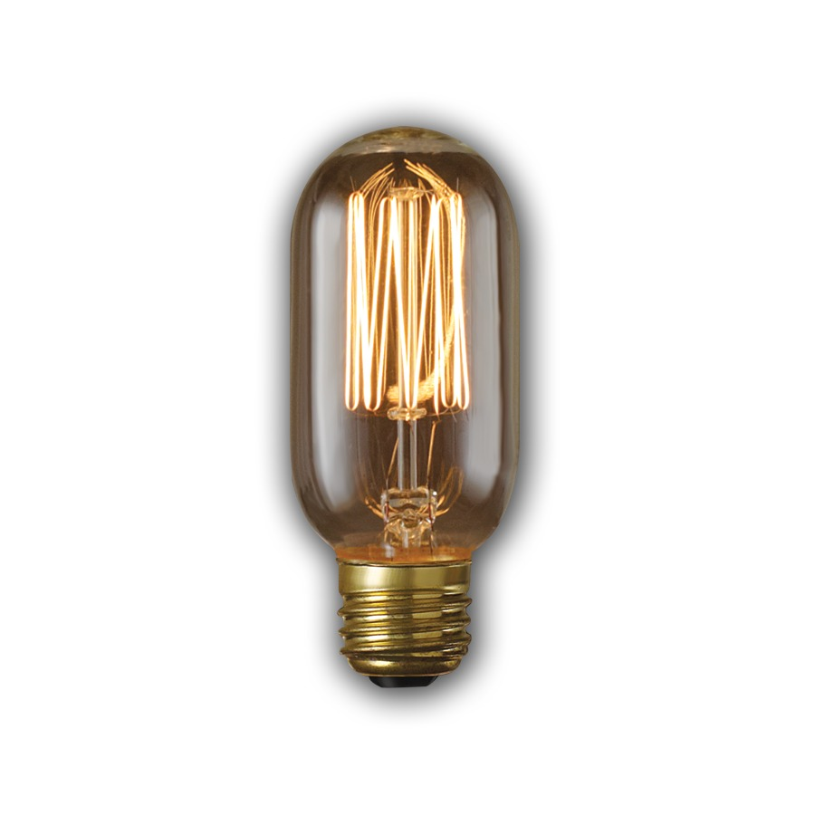 Shop Fashion Lighting Vintage 40 Watt Medium Base Warm White Dimmable Decorative Incandescent