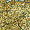 SenSa El Dorado Granite Kitchen Countertop Sample