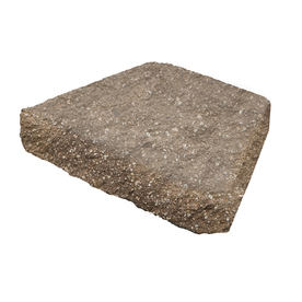 Shop Tan Brown Basic Concrete Retaining Wall Cap Common