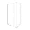 American Bath Factory 70-in H x 46.75-in W Laguna Shower Glass Panel