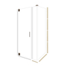 American Bath Factory 70-in H x 40.75-in W Sonoma Shower Glass Panel