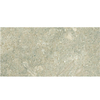 Anatolia Tile 44-Pack 2.95-in x 5.98-in Seagrass Honed Natural Limestone Floor Tile