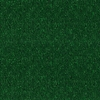 Forest Green Textured Indoor/Outdoor Carpet