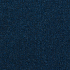 Lancer Enterprises Blue Black Plush Indoor/Outdoor Carpet