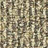 Spice Berber Indoor/Outdoor Carpet