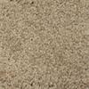 Whitehall Essex Textured Indoor Carpet