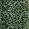 Grand Fortune Cresent Frieze Indoor Carpet
