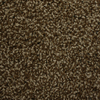 Charger Mocha Cream Textured Indoor Carpet
