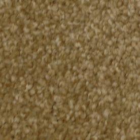 STAINMASTER Solarmax Meadow Brook Novelty Textured Indoor Carpet