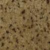 STAINMASTER Westwind Security Textured Indoor Carpet