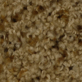 STAINMASTER Solarmax Westwind Inspiration Textured Indoor Carpet