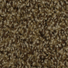 STAINMASTER Winter Escape Pride Frieze Indoor Carpet
