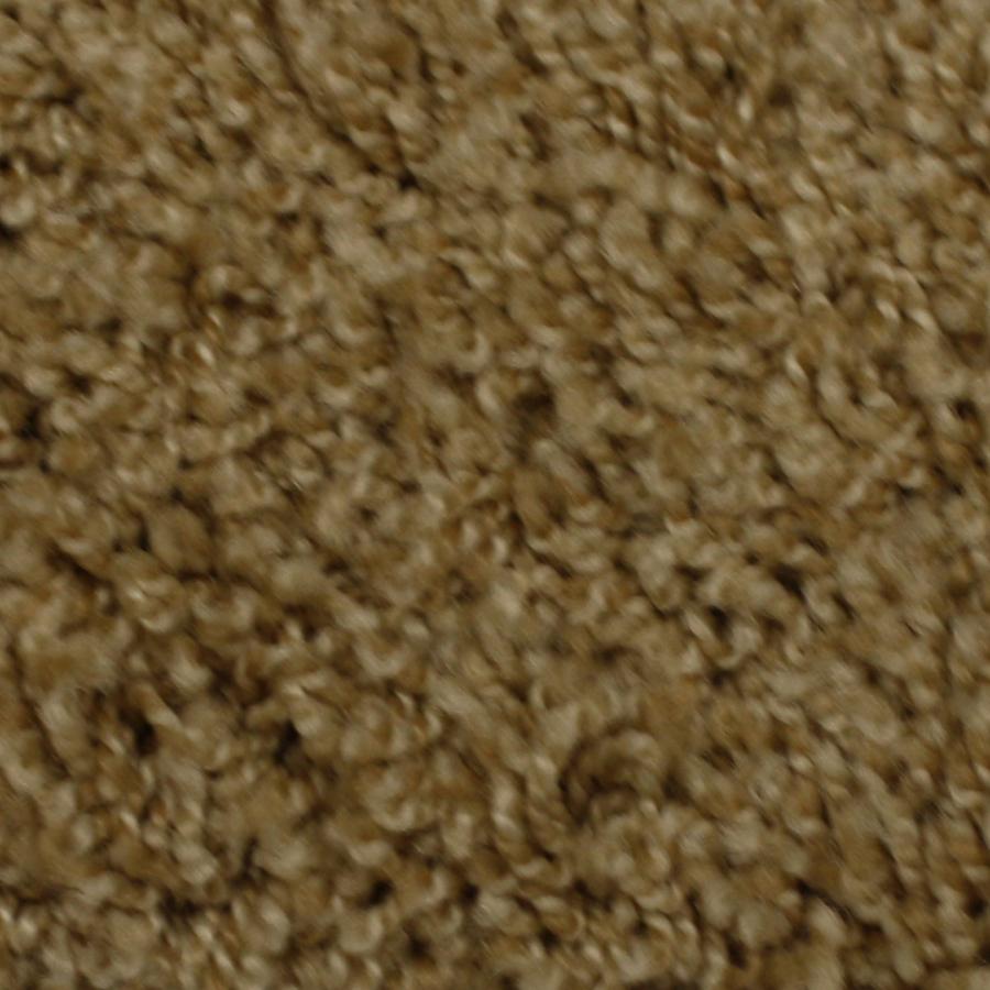 Solarmax Barefoot Manor Friendship Frieze Indoor Carpet At Lowescom