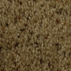 STAINMASTER Barefoot Manor Dazzled Frieze Indoor Carpet