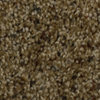 STAINMASTER Barefoot Manor Generosity Frieze Indoor Carpet
